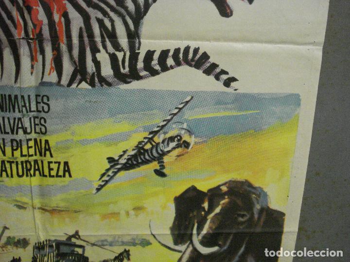 Cine: CDO 7693 LA LEY DE LAS FIERAS DOCUMENTAL AFRICA SALVAJE SERENGETI POSTER ORIGINAL 70X100 ESTRENO - Foto 8 - 229577770