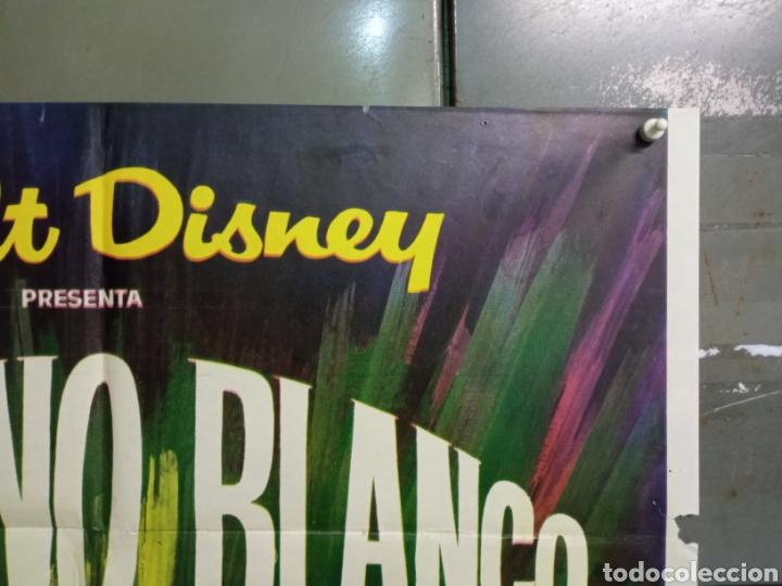 Cine: CDO 8205 INFIERNO BLANCO WALT DISNEY DOCUMENTAL ARTICO LEMMINGS POSTER ORIGINAL 70X100 ESTRENO - Foto 6 - 234311335