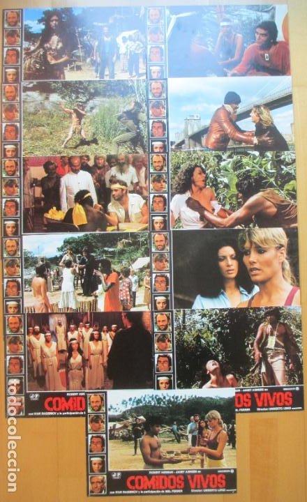 Cine: CARTEL + 11 FOTOCROMOS COMIDOS VIVOS ROBERT KERMAN JANET AGREN 1980 CCF235 - Foto 3 - 248226025