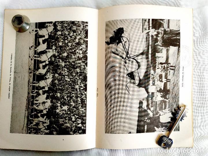 Cine: 1958 - EQUITACIÓN - TEMAS ESPAÑOLES NÚM. 359 - Foto 2 - 252497750