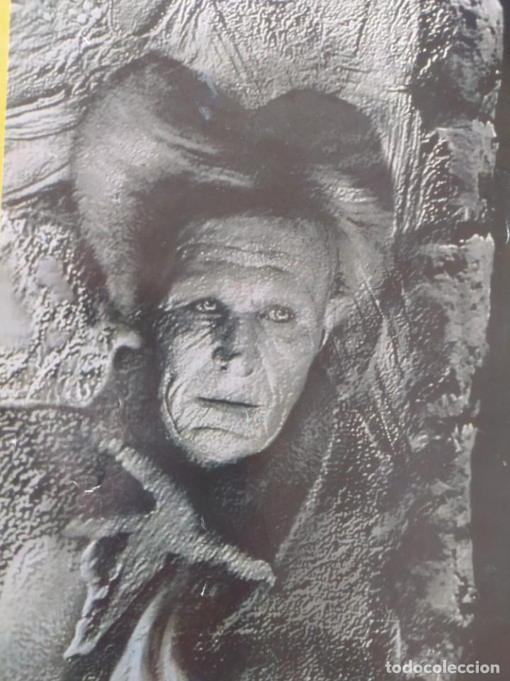 Cine: POSTER DRACULA, FORD COPOLA. 88X61 CMS. - Foto 6 - 254225575