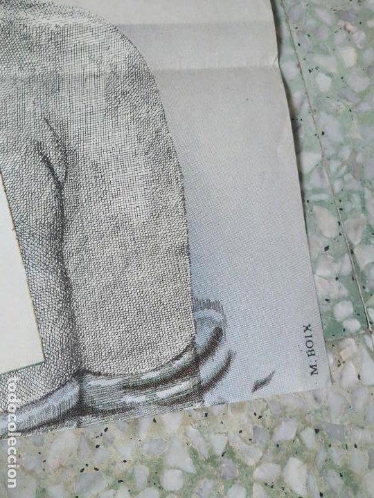 Cine: Con el culo al aire. Carles Mira, Ovidi Montllor, Eva León. 97 x 66,5 cm. - Foto 5 - 257971965