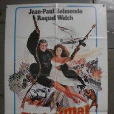 Cine: CDO L184 EL ANIMAL JEAN-PAUL BELMONDO RAQUEL WELCH POSTER ORIGINAL 70X100 ESTRENO. Lote 271386103