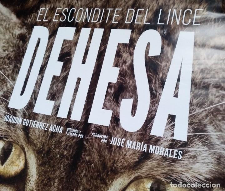 Cine: DEHESA CARTEL DE CINE ESCONDITE DEL LINCE 2019 JOAQUIN GUTIERREZ FELIX RODRIGUEZ DE LA FUENTE DVD - Foto 3 - 273285143