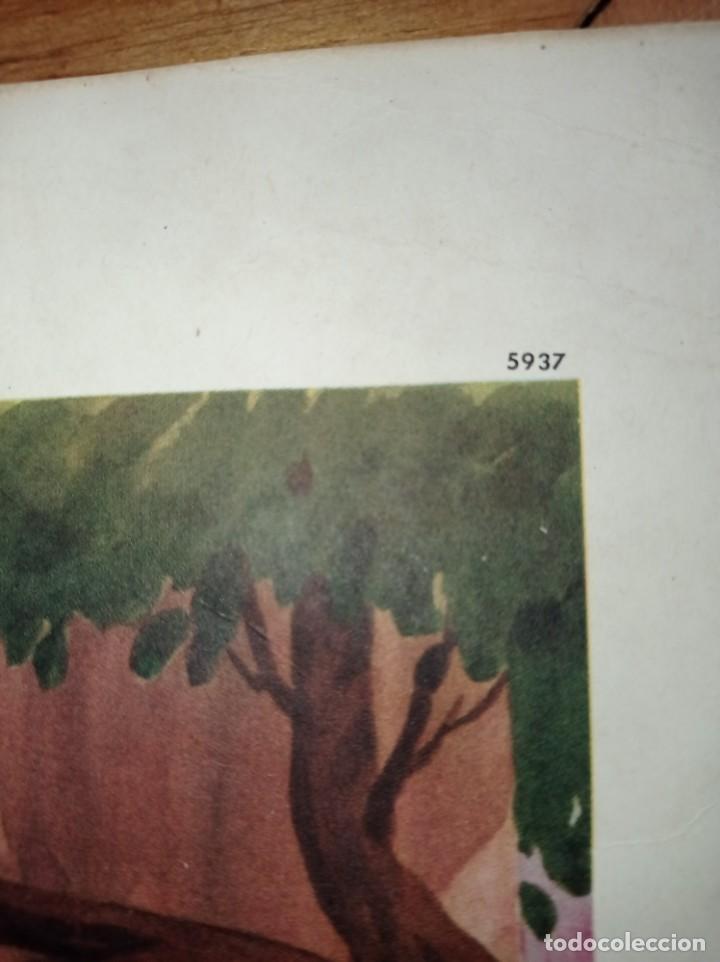 Cine: Poster Blancanieves y los enanitos- Good Friends all - Disney numerado - 45x52cm - Snow White - Foto 5 - 282875958