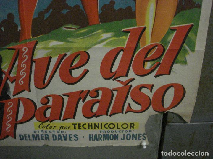 Cine: ABI46 AVE DEL PARAISO DEBRA PAGET JEFF CHANDLER SOLIGO POSTER ORIGINAL 70X100 ESTRENO LITOGRAFIA - Foto 9 - 286438453