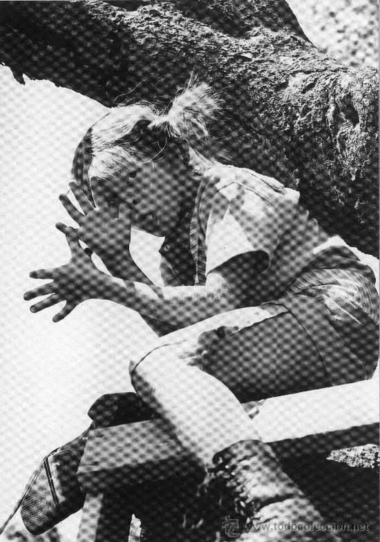 CUADRO EN MADERA DE 40X28 CM: PIPI CALZASLARGAS, BURLA (Cine - Revistas - Colección grandes películas)
