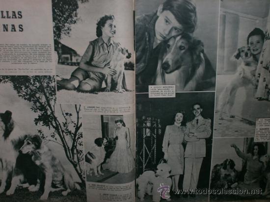 Cine: CAMARA Nº89.1946.NANCY COLEMAN,I.BERGMAN,P.BALLESTEROS,M.LOCKWOOD,J.HODIAK,B.TYLER,W.BEERY,N.MISTRAL - Foto 4 - 36953389