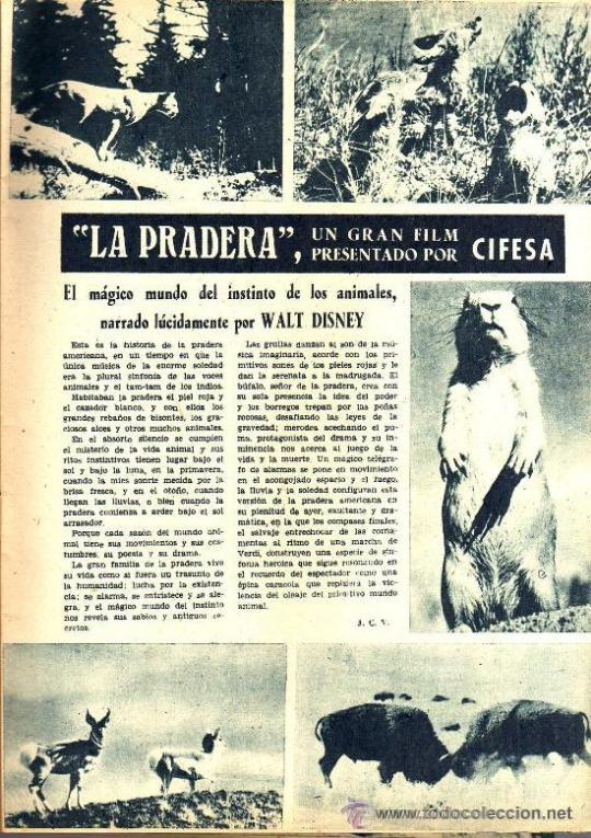 Cine: RADIOCINEMA Nº 347 - 16 MARZO 1957 - PORTADA MARIANNE COOK - CONTRAPORTADA GIA SCALA - Foto 4 - 38412147