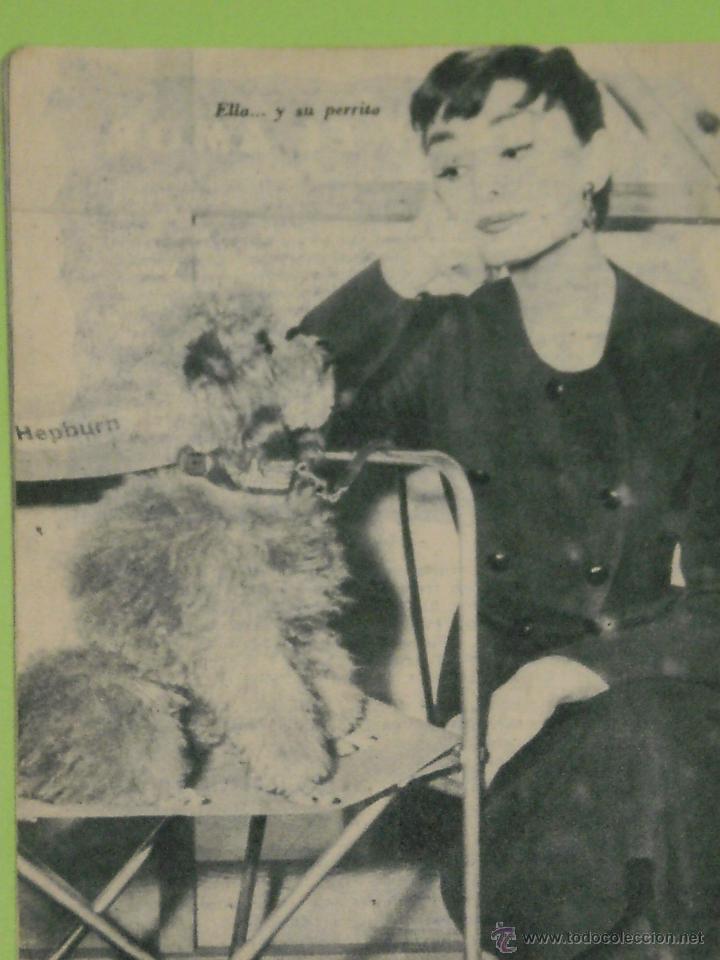 Cine: REVISTA Nº 20 COLECCION IDOLOS DEL CINE . AÑO 1958 . AUDREY HEPBURN . - Foto 2 - 239896605