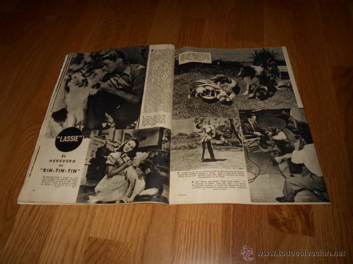 Cine: CAMARA. REVISTA CINEMATOGRÁFICA Nº113 SEPTIEMBRE 1947 LASSIE R. TAYLOR MARTA SANTAOLALLA R. REGAN - Foto 2 - 51885542