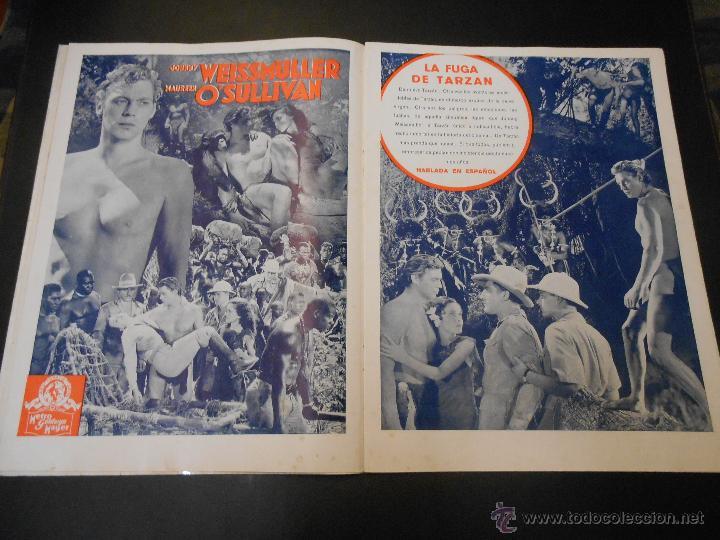 Cine: EL RUGIDO DEL LEON - NUMERO EXTRAORDINARIO DE 1936 - JOYAS DEL SEPTIMO ARTE EN EL INTERIOR - Foto 10 - 52640178