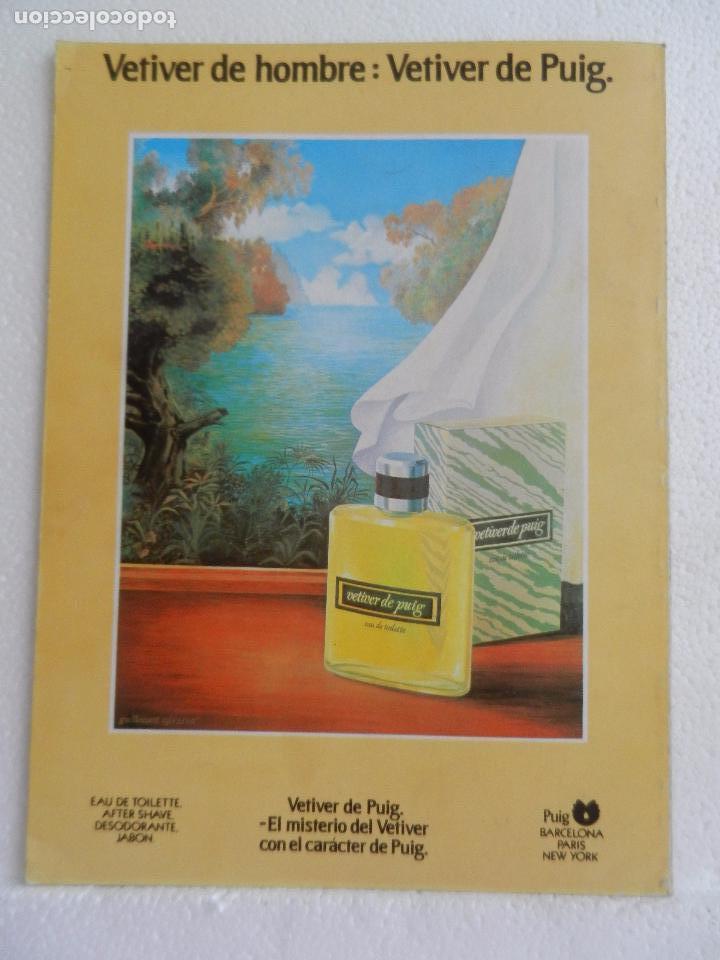 Cine: REVISTA DE CINE DIRIGIDO POR Nº 83 MAYO 1983. ENTREVISTA A CARLOS SAURA. - Foto 2 - 96568835
