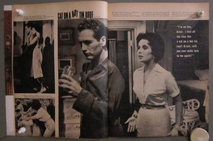 Cine: YD01 ELIZABETH TAYLOR COLECCION DE 8 REVISTAS AMERICANAS SCREEN STORIES 50s - 60s - Foto 9 - 106939263