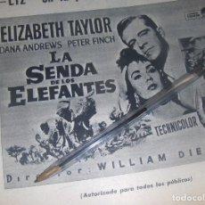 Cine: LA SENDA DE LOS ELEFANTES, ELISABETH TAYLOR. PARAMOUND. PUBLICIDAD.. Lote 122062259
