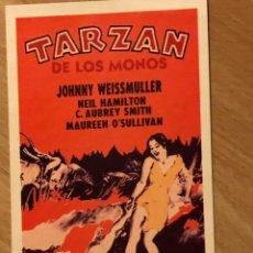 Cine: PROGRAMA CARTÓN FACSÍMIL JOHNNY WEISSMULLER.TARZAN DE LOS MONOS. Lote 128679182
