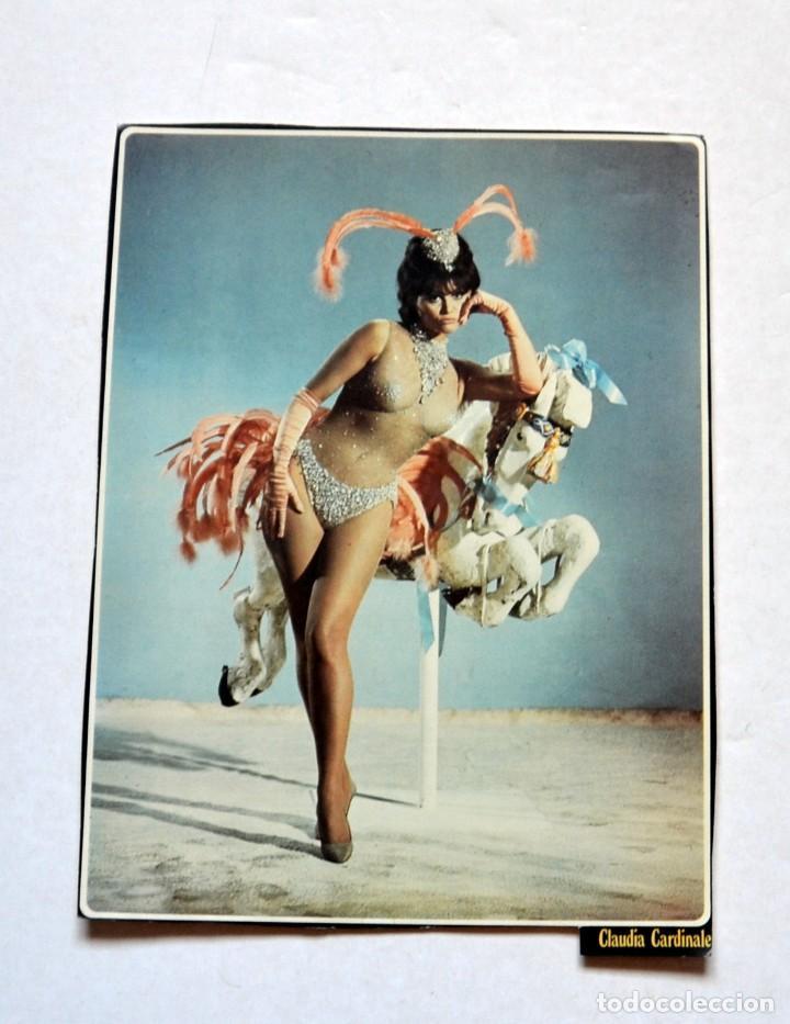 LAMINA DE REVISTA AÑOS 80: CLAUDIA CARDINALE (Cine - Revistas - Colección ídolos del cine)