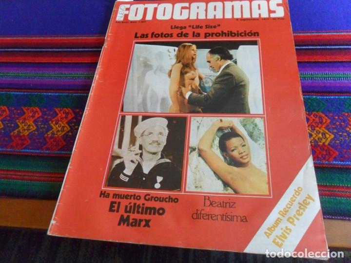 Cine: STAR WARS 11 NUEVO FOTOGRAMAS PRIMERAS RESEÑAS REPORTAJE CRÍTICA DE LA GUERRA DE LAS GALAXIAS 1977. - Foto 20 - 173491528
