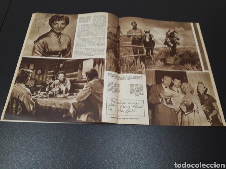 Cine: PALOMA ESTESO, ALAN LADD, AVA GARDNER, RITA HAYWORTH, GLENN FORD. N° 673.06/09/1953. - Foto 9 - 183673051
