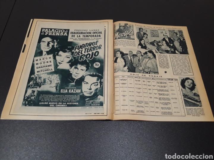 Cine: PALOMA ESTESO, ALAN LADD, AVA GARDNER, RITA HAYWORTH, GLENN FORD. N° 673.06/09/1953. - Foto 12 - 183673051