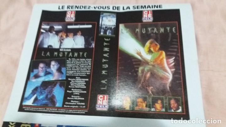 Cine: .cine-revue-6 marzo 2003-nº10(s.bullock,hugh grant,k.minoge,a.sordi,r.reagan,n.kidman,etc)voir phot - Foto 12 - 254974095