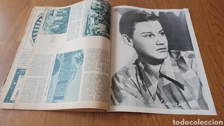Cine: REVISTA PRIMER PLANO N° 311. AÑO 1946 .MYRNA LOY. - Foto 14 - 264803454