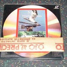 Cine: LASER DISC - DOCUMENTALES NHK LOTE DE 5 UNIDADES LP DE 120 MINUTOS, NUEVO SIN DESPRECINTAR. Lote 27107457