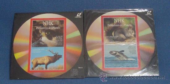 Cine: Laserdisc, DISCOS LASER DOCUMENTALES, RODRIGUEZ DE LA FUENTE, NATIONAL GEOGRAPHIC, JACQUES COUSTEAU - Foto 3 - 39061199