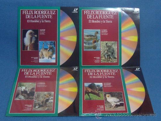 Cine: Laserdisc, DISCOS LASER DOCUMENTALES, RODRIGUEZ DE LA FUENTE, NATIONAL GEOGRAPHIC, JACQUES COUSTEAU - Foto 4 - 39061199