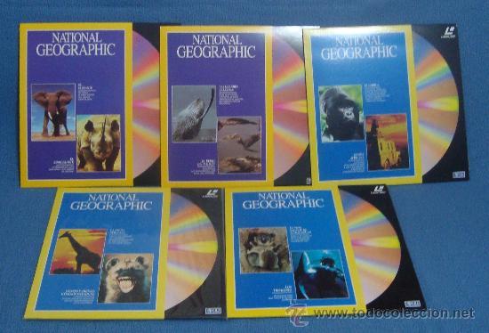 Cine: Laserdisc, DISCOS LASER DOCUMENTALES, RODRIGUEZ DE LA FUENTE, NATIONAL GEOGRAPHIC, JACQUES COUSTEAU - Foto 5 - 39061199