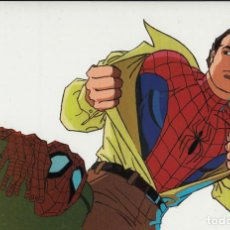 Cine: MARVEL ACTION HOUR - PROMOTIONAL ANIMATION CELL - SPIDERMAN - PETER PARKER (20TH CENTURY FOX,1994). Lote 67687905