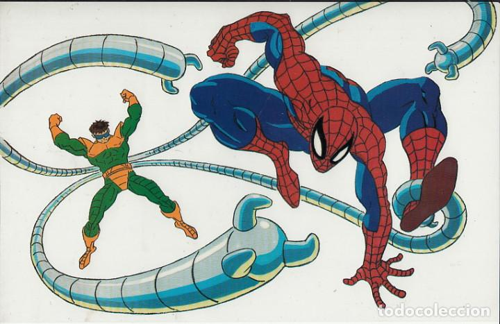 MARVEL ACTION HOUR - PROMOTIONAL ANIMATION CELL - SPIDERMAN - OCTOPUS (20TH CENTURY FOX,1994) (Cine - Varios)
