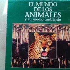 Cine: EL MUNDO DE LOS ANIMALES Y SUS AMBIENTES EN 9 LASER DISC - BBC.. Lote 169345453