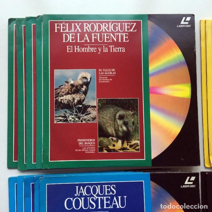 Cine: LASER DISC - NATIONAL GEOGRAPHIC / JACQUES COUSTEAU / FÉLIX RODRÍGUEZ DE LA FUENTE / NHK - Foto 2 - 171223477