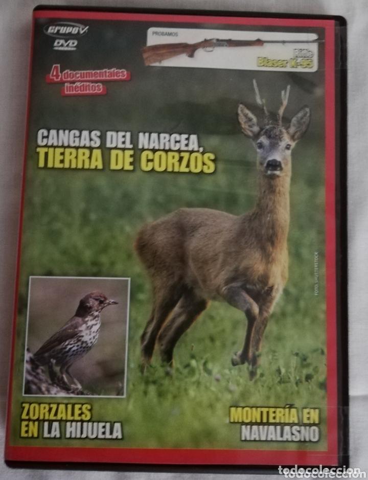 DVD CANGAS DEL NARCEA, TIERRA DE CORZOS (Cine - Varios)