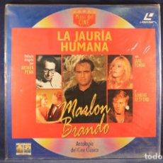 Cine: LA JUARÍA HUMANA - LASER DISC. Lote 195276516