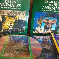 Cine: LASER DISC / EL MUNDO DE LOS ANIMALES / NATIONAL GEOGRAPHIC - COUSTEAU - ETC... / 20 DISCOS DE LUJO.. Lote 199224871