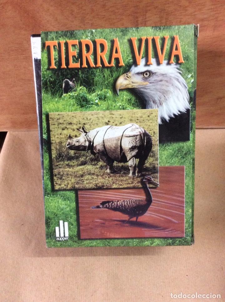 Cine: 4 colecciones en dvd - Foto 3 - 204328208