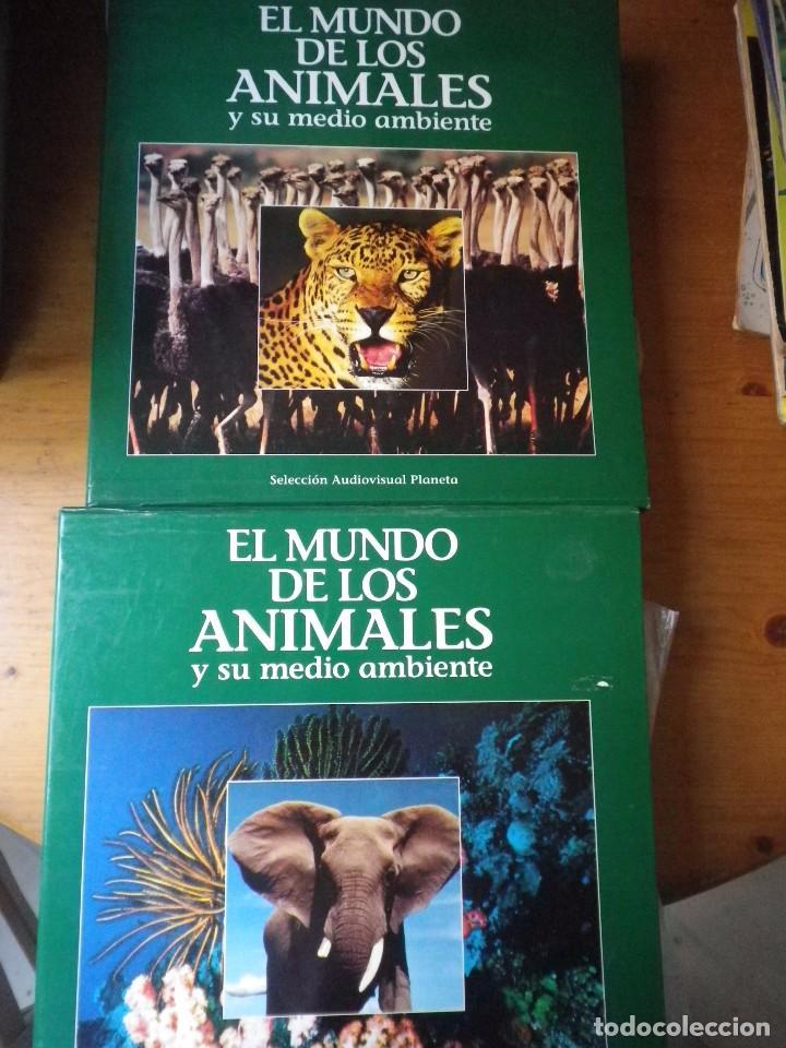 21 LASER DISC EL MUNDO DE LOS ANIMALES Y SU MEDIO AMBIENTE (Cine - Varios)