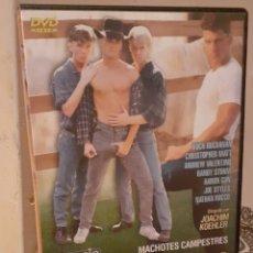 """Cine: PELÍCULA GAY """"LOS SEMENTALES DE LA GRANJA"""". Lote 207131567"""