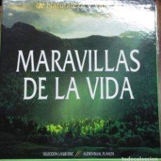 Cine: MARAVILLAS DE LA VIDA - COLECCIÓN COMPLETA DE 10 LASER DISC - NATURALEZA Y VIDA - PLANETA. Lote 222628097