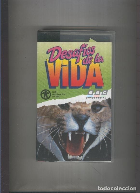 VIDEO VHS: DOCUMENTAL SOBRE TIBURONES Y EXPEDICION A VENEZUELA (Cine - Varios)