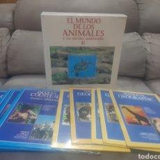 Cine: 10 LÁSER DISC EL MUNDO DE LOS ANIMALES Y SU MEDIO AMBIENTE II (PRECINTADO). Lote 258043095