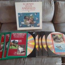 Cine: 10 LÁSER DISC EL MUNDO DE LOS ANIMALES Y SU MEDIO AMBIENTE II (PRECINTADO). Lote 260522735