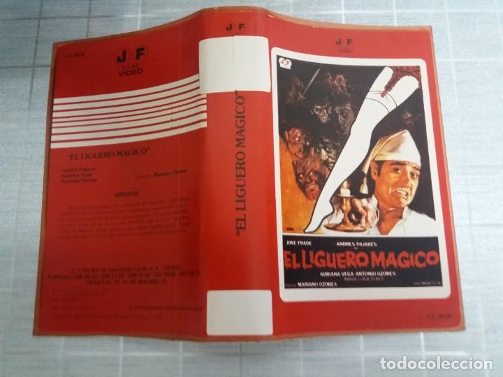 CARATULA EL LIGUERO MAGICO VHS (Cine - Varios)