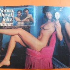 Cine: REPORTAJE FOTOGRAFICO 1984 - NORMA DUVAL - 4 PAGINAS. Lote 47313132