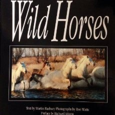 Coches: THE LAST OF THE WILD HORSES. Lote 283169088
