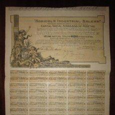 Coleccionismo Acciones Españolas: ACCIÓN AGRÍCOLA INDUSTRIAL BALEAR S.A. DOMICILIADA EN MADRID, 1904. Lote 226243815
