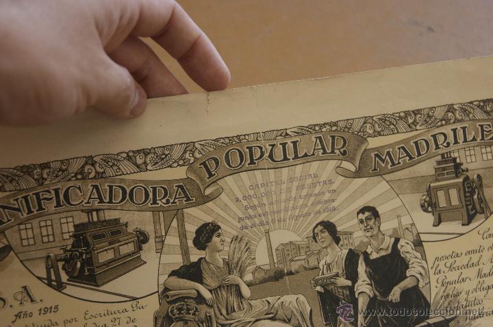 Coleccionismo Acciones Españolas: Antigua accion de panificadora popular madrileña, Madrid. 1916 - Foto 3 - 39720138