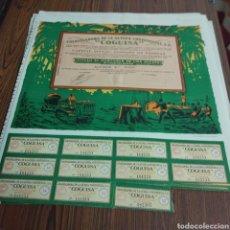 Coleccionismo Acciones Españolas: 276 BIS. 13 ACCIONES DE COGUISA. 1955. Lote 130837345